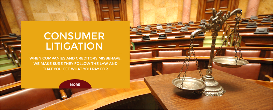 Consumer Litigation