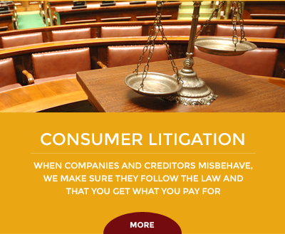 Consumer Litigation